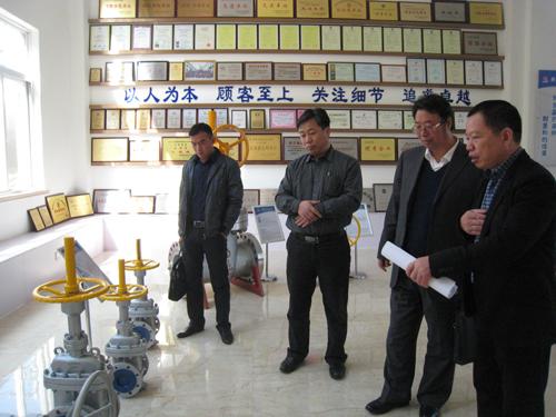 泵阀研究院赴龙湾区就下一步计划开展工作