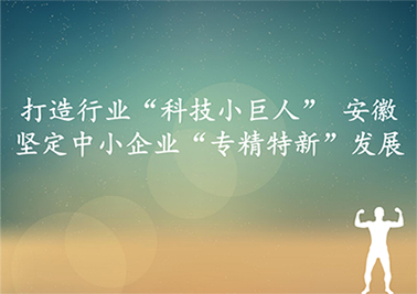 """打造行业""""科技小巨人"""" 安徽坚定中小企业""""专精特新""""发展"""