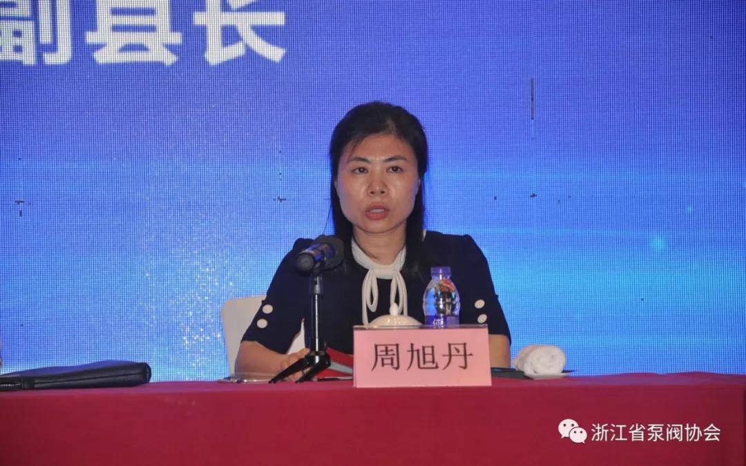 永嘉县副县长周旭丹在全国阀门标准工作会议讲话