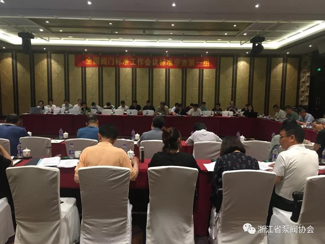 全国阀门标准工作会议分组讨论审查《阀门密封面堆焊工艺评定》等6项标准