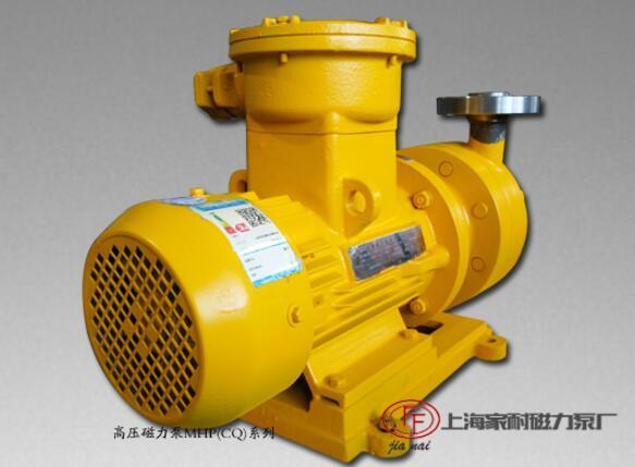领航高压磁力泵发展 上海家耐十年拼搏成大器