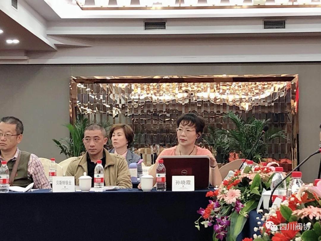 秘书处孙晓霞秘书长汇报协会2018年度经费收支情况