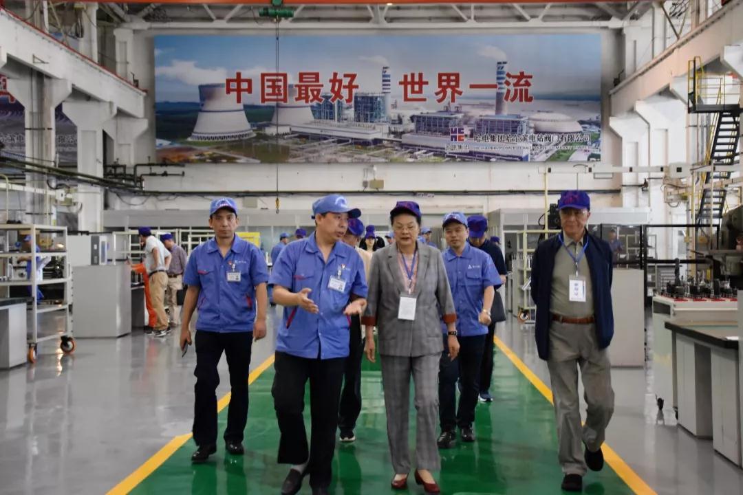 """""""华龙一号""""等百万千瓦核电机组MSR先导式安全阀通过鉴定"""