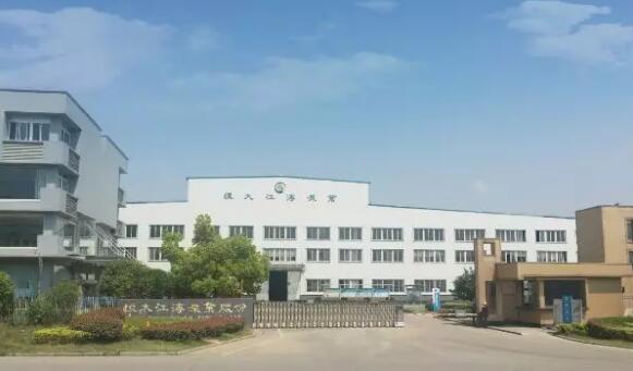恒大江海泵業受邀參加2019世界制造業大會