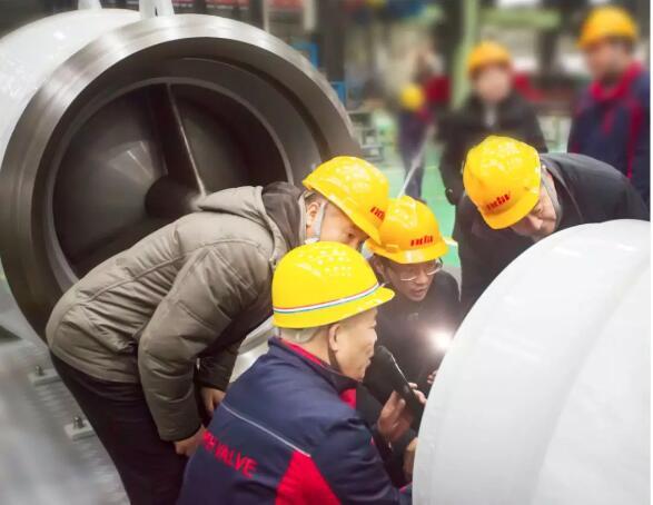 自贡新地佩尔--LNG用深冷轴流式止回阀顺利通过中通协国产化鉴定