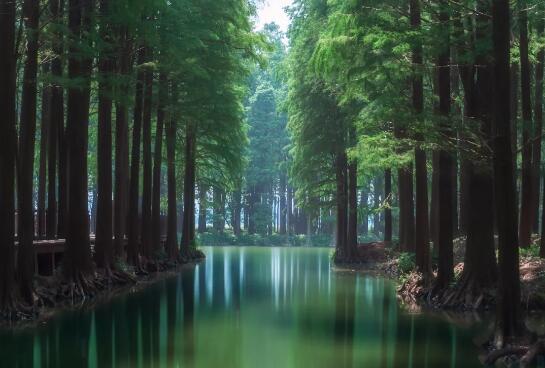 西门子携手万朗水务以数字化赋能水行业生态圈
