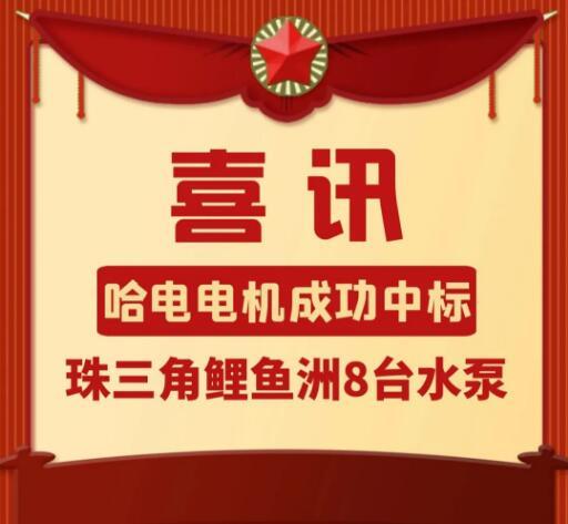 哈电电机凤凰注册平台标珠三角鲤鱼洲8台大型水泵