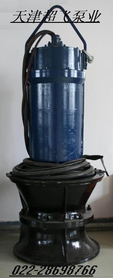 潜水轴流泵,天津轴流泵