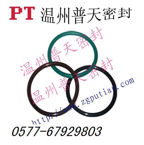 氟橡胶0型圈