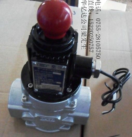 燃气电磁阀AF01B和AF05B系列DN15至DN150报警器配套电磁阀
