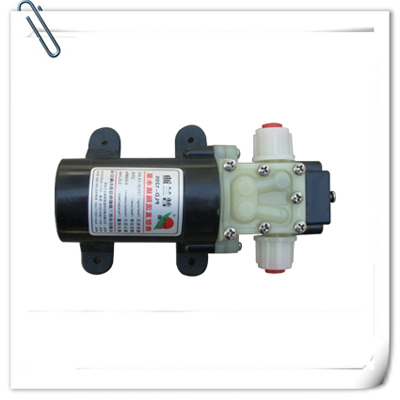 微型电动隔膜泵 微型隔膜