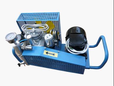 高压空气压缩机wy-100