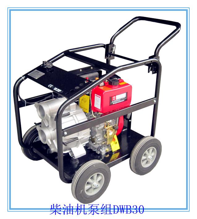 便携式柴油机泵组