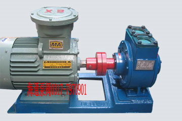 YPB型汽油滑片泵,防爆油泵