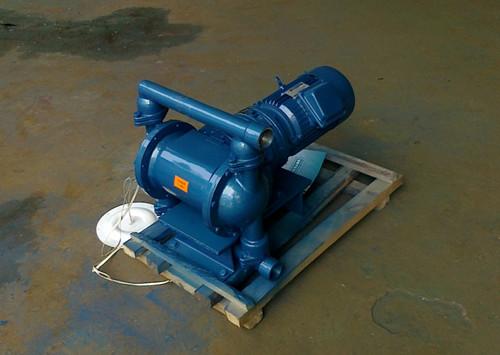 DBY-40不锈钢(304)隔膜泵