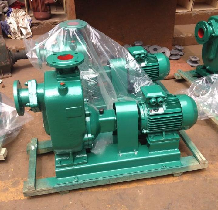 50ZW10-20 自吸式排污泵