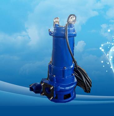 【保证厂家直销蓝洲牌MPE220-2H潜水排污泵】