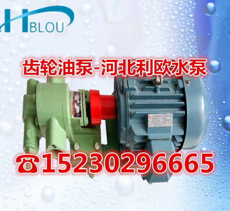 KCB-33.3耐高温齿轮油泵加压输送燃油泵2CY-2/1.45自吸式抽柴油泵