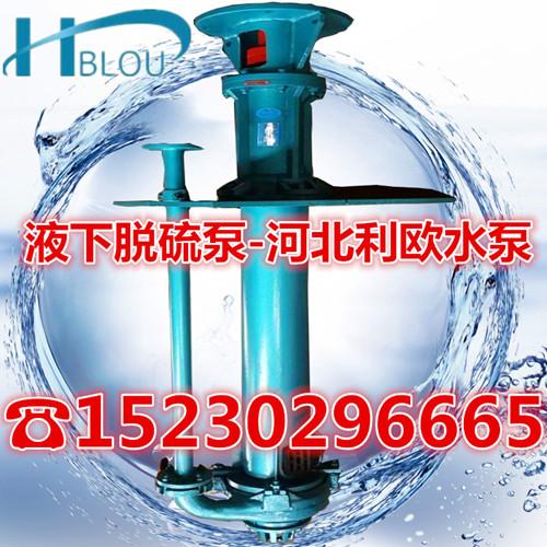 液下脱硫泵40TL-B25液下渣浆泵立式灰浆液下脱硫除尘泵循环污水泵