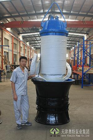 水利工程用的轴流潜水泵-大型养殖场用的潜水轴流泵
