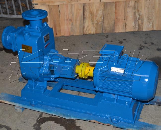厂家批发销售大流量低转速不锈钢电动自吸泵 隧道工程 市政专用ZW300-800-20P