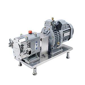 浙江力高转子泵(无极变速)