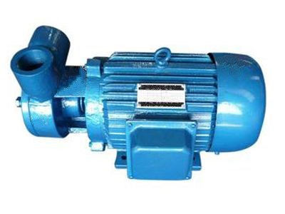 W系列旋涡泵