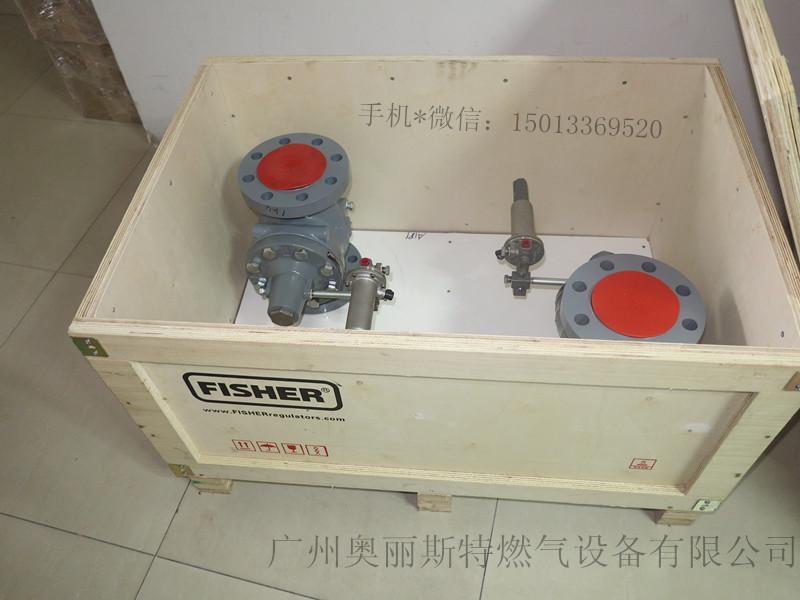 EZR-OSX天然气调压器