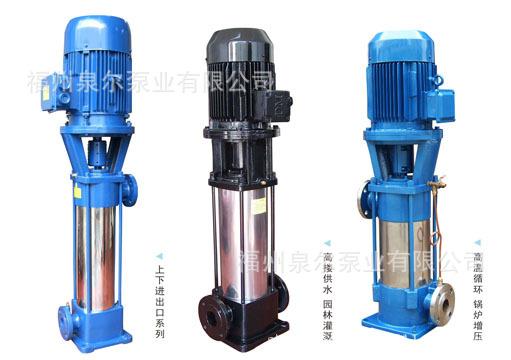 立式多级泵口径25mm 4m3/h 小区生活加压水泵 漳州生活加压水泵
