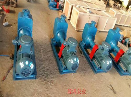 源鸿泵业供应50CYZ-20自吸式离心泵,专业不锈钢离心泵