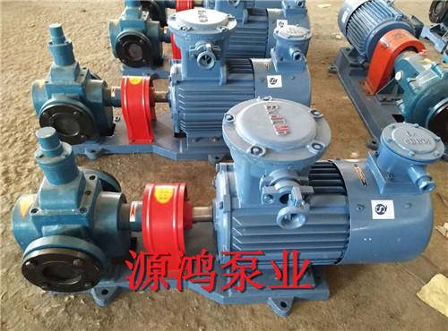 源鸿泵业YCB20-0.6圆弧齿轮泵,不锈钢齿轮泵