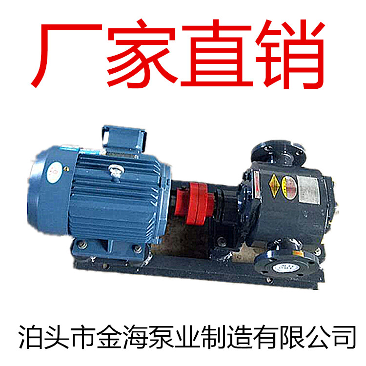 泊头WQCB铸钢沥青保温泵/合金沥青泵/不锈钢保温泵