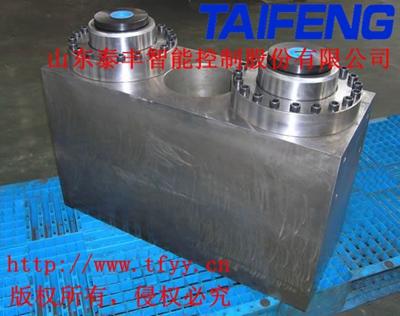 山东泰丰MB-02-09N-00电液折弯机油缸