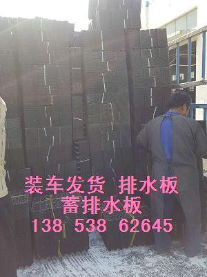 衡水地下室凹凸排水板/车库15mm隔根板13853862645