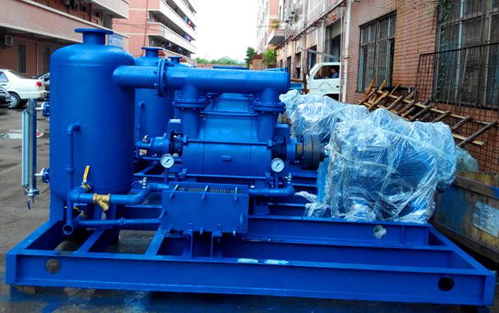 2be1253-oby纳西姆水环真空泵 填料密封  配系统