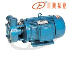 1W型单级直联旋涡泵