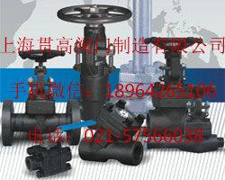 DZ41W-150LB锻钢低温闸阀《贯高》