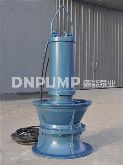 低扬程潜水轴流泵