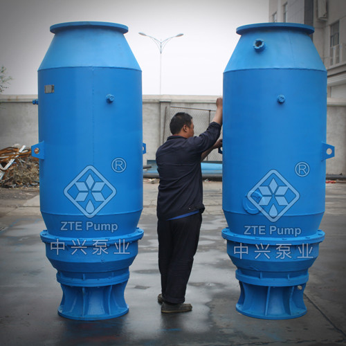 山东350QZB立式安装轴流泵 ztepump