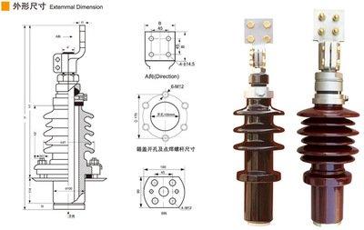 变压器瓷瓶瓷套管BJLBFBFJ-BJLW
