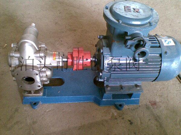 泊胜创牌不锈钢齿轮泵生产厂家