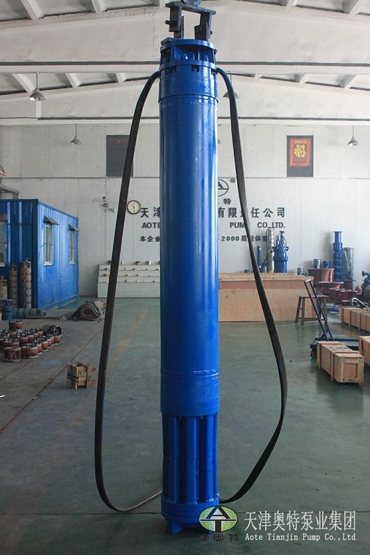 1228系列电潜机_可组合潜水电机