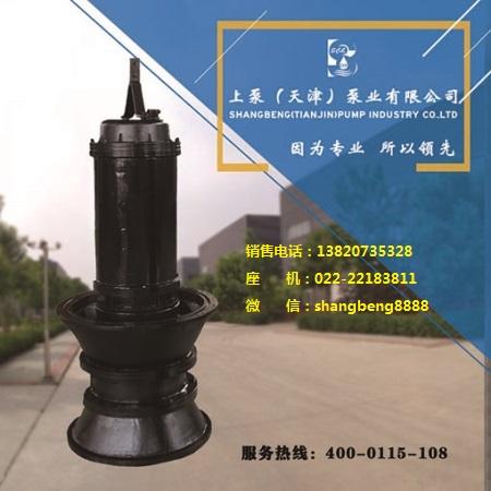 350QZB潜水轴流泵