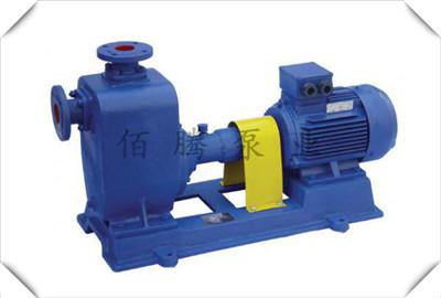 厂家直销自吸排污泵 卧式zw自吸泵定制 无堵塞自吸抽污水泵批发