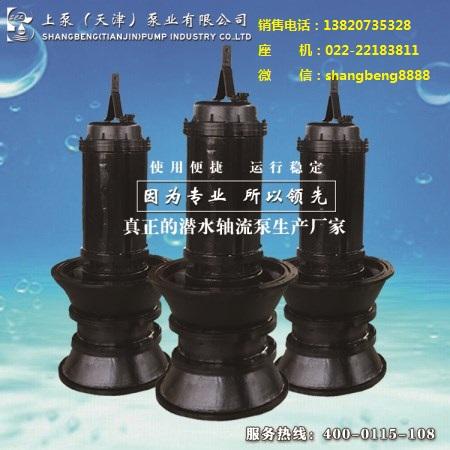 雨季排水潜水轴流泵