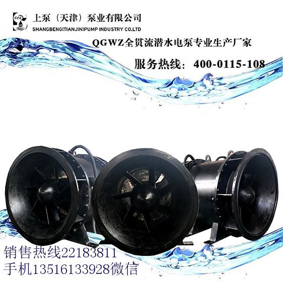 湖北十堰带滑轮和轨道的S形叶片自动双相抽水全贯流泵