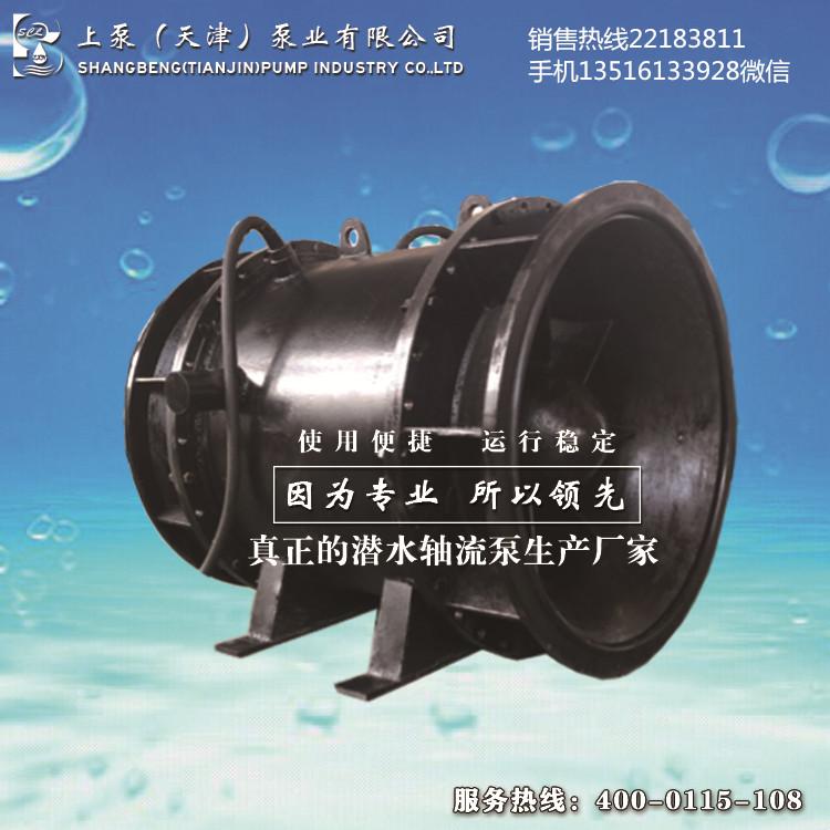 上泵QGWZ带保护装置的全贯流潜水电泵