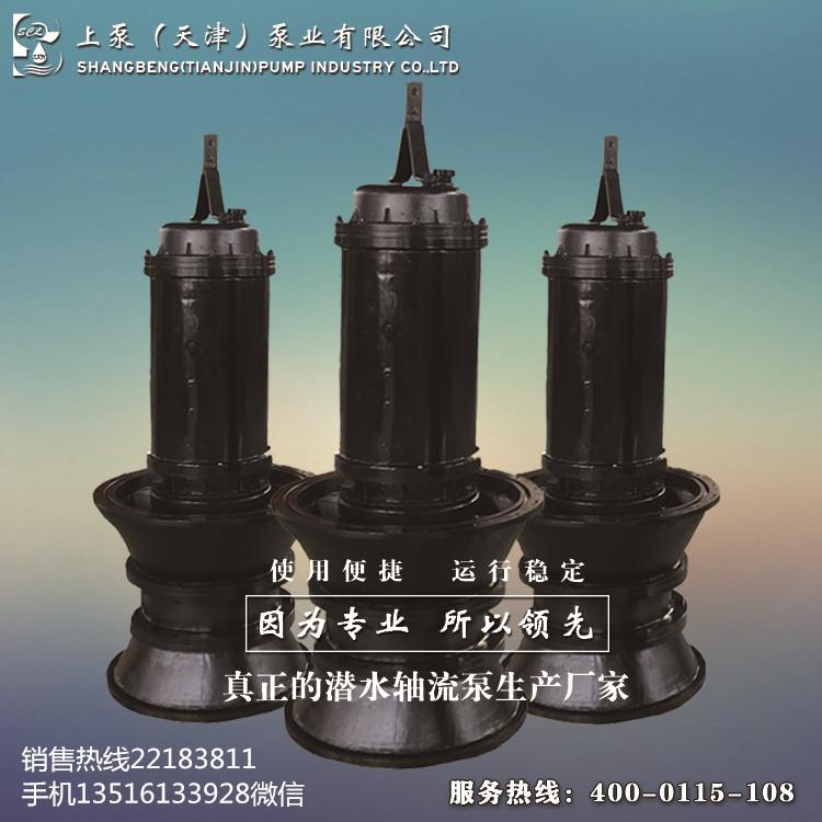 福建南平高扬程潜水轴流泵