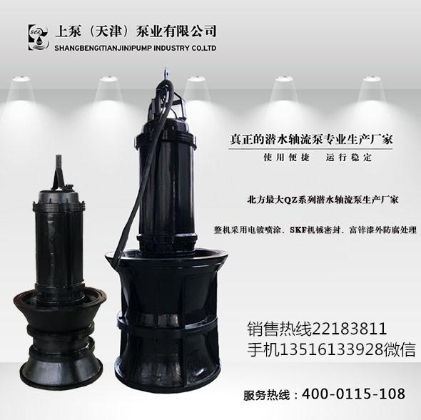 北京顺义高压轴流泵