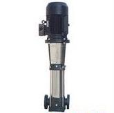 中国润源专业立式南方泵(型号:CDLF2-130)